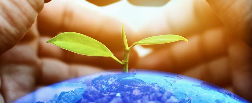 Corso per Auditor/Lead Auditor di Sistemi di Gestione Ambientale – ISO 14001:2015 (40 ore)